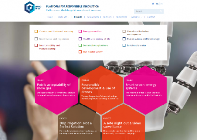 Project Descriptions for Platform for Responsible Innovation (2016)